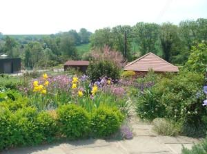 The Keen's beautiful garden